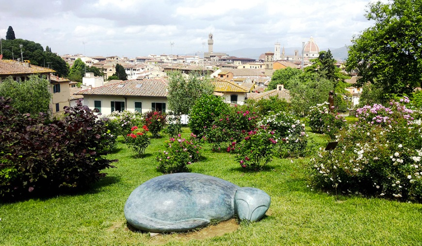 giardino delle rose a firenze - roses garden in florence